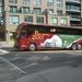 Onze bus met de afbeelding van de ijsbeer.
