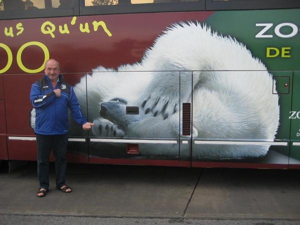 Een blauwe ijsbeer? De witte lacht zich te pletter.