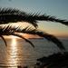 zonsondergang-colonia