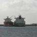 Sloehaven met boot  D 006