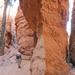 Bryce - Navajo Loop Trail.