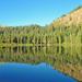 Lake Mary Bishop