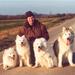 R & ons 4 honden