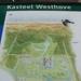 Westhove L+L 021