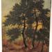IMG_1089 dennebomen (Kempen)