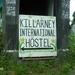 Ierland 2008. 021a