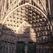 kathedraal Straatsburg