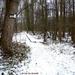 2010_01_10 Denderleeuw 02 Wellemeersen