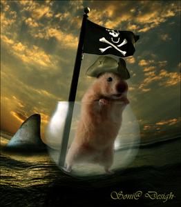 fotomanipulatie met hamster