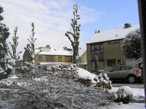 feb 2010 014