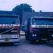 Volvo en Daf