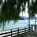 1-8 Lac du Castillon 3