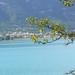 1-8 Lac du Castillon 7