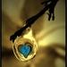 druppel met hart
