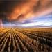 land met donkere wolken