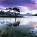 landschap met water