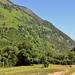 Pyreneëen 2009