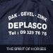 DSC_sponser
