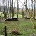 2010_04_11 Petigny 21