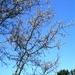 2010_04_18 Walcourt 18