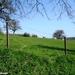 2010_04_18 Walcourt 20