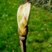 2010_04_18 Walcourt 33