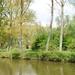 DSC_0001 De Denderroute in County Style...!