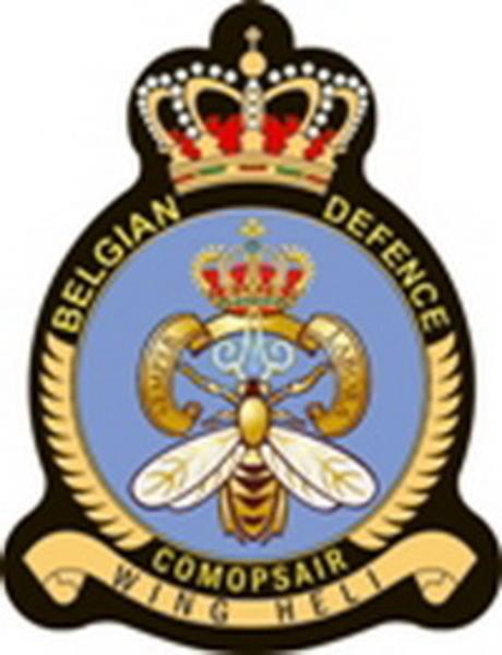 Afbeelding: Logo Heli Wing - Licht vliegwezen