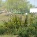 VillaMaritiemMei2010 035