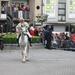 Dendermonde Ros Beiaard ommegang '01 013