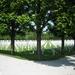 Verdun 025