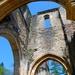 Ruïne van de oude abdij van Orval (1)
