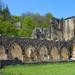 Ruïne van de oude abdij van Orval (5)