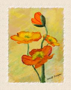 beschilderde bloem