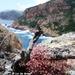 2010_06_20 Corsica 098 Porto