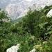 2010_06_20 Corsica 116