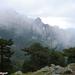 2010_06_21 Corsica 044 Col de Bavella