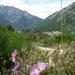 2010_06_22 Corsica 068 Vizzavona
