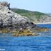 2010_06_24 Corsica 044 Macinaggio excursion les Iles Finocchiarol