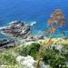 2010_06_24 Corsica 073 Cap Corse