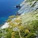 2010_06_24 Corsica 074 Cap Corse