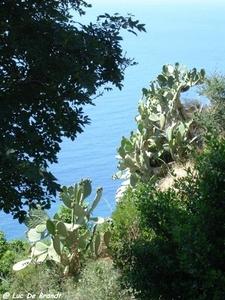 2010_06_24 Corsica 110 Nonza