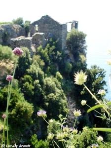 2010_06_24 Corsica 120 Nonza