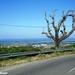 2010_06_24 Corsica 160