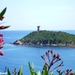 2010_06_25 Corsica 125