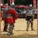 sized_sized_DSC21209a grondvechten ridders