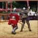 sized_sized_DSC21210a grondvechten ridders