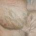 De Bengel  pastel  24 * 49 cm