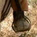 Camargue Cowboy (2)
