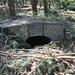 New Zealand Bunker in het bos